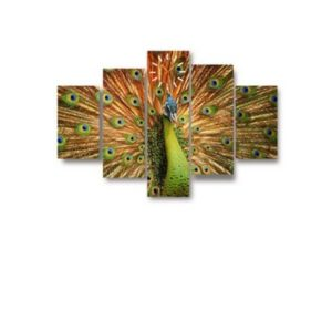 Peacock-5-piece-canvas-wall-frame--400